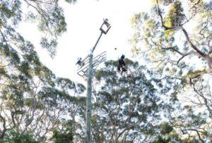 drop-pole-facilities