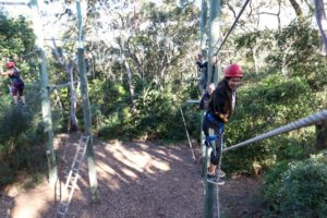 people-on-high-ropes