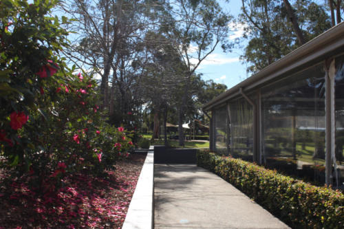 LPC Walkway Beside Pergola